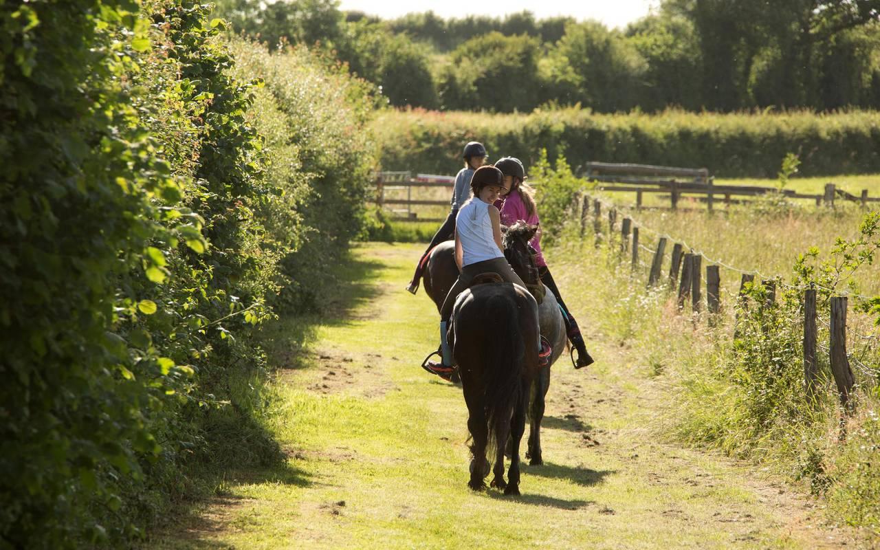horseback riding with children on a sunny day, centre courses internships horsemanships, Château d'Ygrande.