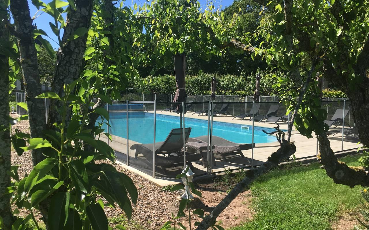 Vue sur la piscine à travers les arbres, hotel luxe auvergne, Château d'Ygrande.