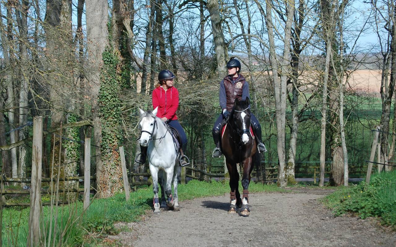 Petite balade à cheval dans les environs, piscine spa découvertes auvergne allier, Château d'Ygrande