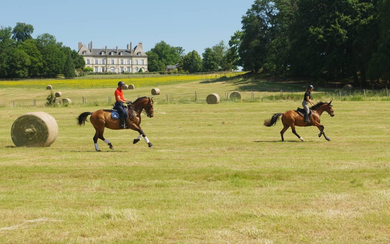 Equitation et balade à cheval sur notre grand terrain, hotel de charme auvergne, Château Ygrande.