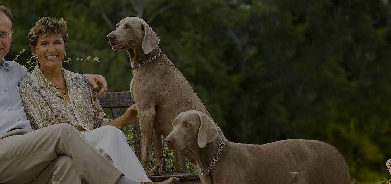 The owners and their dogs , boutique hotel auvergne, Château d'Ygrande