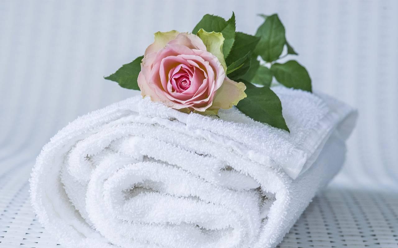 Une jolie rose, spa bien être piscine hammam, Château d'Ygrande.