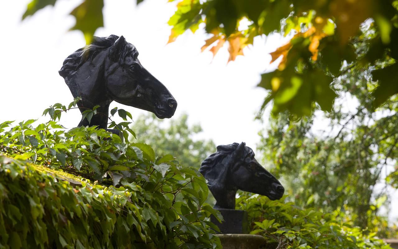 Sculptures de chevaux dans le jardin, cours stages centre équestre auvergne, Château d'Ygrande.