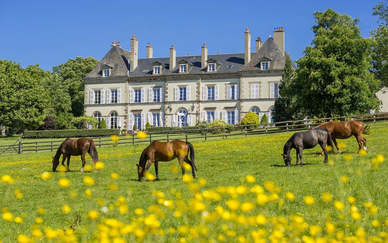 Les chevaux dans le jardin, restaurant gastronomique en Auvergne, Château d'Ygrande.